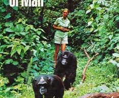 In-the-Shadow-of-Man-Jane-Goodall