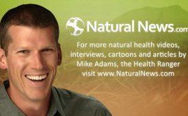 Mike_Adams_Natural_News_Health_Ranger